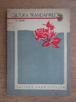Anticariat: E. Luban - Cultura trandafirilor