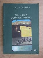 Anticariat: Lucian Cursaru - Buna ziua, domnule Mozart