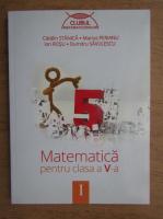 Anticariat: Catalin Stanica - Matematica pentru clasa a V-a (volumul 1)