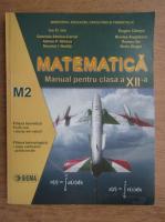 Ion D. Ion - Matematica. Manual pentru clasa a XII-a, M2 (2007)