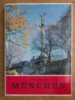 Anticariat: Ion Miclea - Munchen