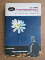 Anticariat: Marcel Proust - La umbra fetelor in floare (volumul 1)