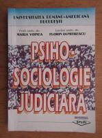 Maria Voinea - Psiho-sociologie judiciara