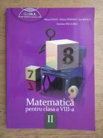 Mircea Fianu, Marius Perianu, Ioan Balica, Dumitru Savulescu - Matematica pentru clasa a VIII-a, partea II (2013)