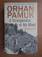 Orhan Pamuk - A strangeness in my mind