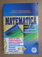 Anticariat: Catalin Petru Nicolescu - Matematica pentru clasa a XI-a
