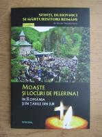 Silvan Theodorescu - Moaste si locuri de pelerinaj in Romania si in tarile din jur (volumul 11)
