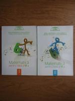 Stefan Smarandoiu - Matematica pentru clasa a VI-a (2 volume)