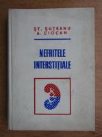 Anticariat: Stefan Suteanu, Adrian Ciocan - Nefritele interstitiale