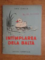 Ana Ionita - Intamplarea de la balta