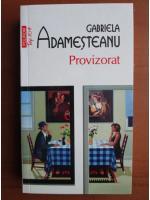 Anticariat: Gabriela Adamesteanu - Provizorat (Top 10+)
