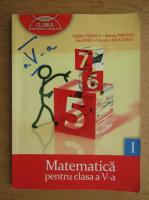 Catalin Stanica, Ion Rosu, Marius Perianu - Matematica, clasa a V-a (volumul 1, 2011)