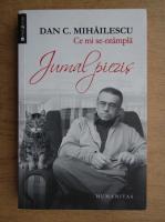 Dan C. Mihailescu - Ce mi se-ntampla. Jurnal piezis