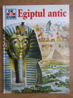 Anticariat: Dieter Kurth - Egiptul antic