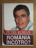 Anticariat: Petre Roman - Romania incotro?