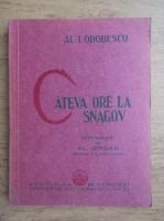 Anticariat: Al. I. Odobescu - Cateva ore la Snagov (1930)