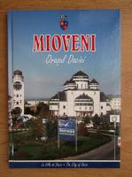 Mioveni, orasul Daciei
