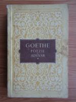 Goethe - Poezie si adevar, volumul 1