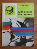 Anticariat: Margareta Craiu - Sunet, zgomot, poluare sonora