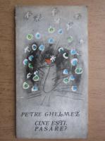 Anticariat: Petre Ghelmez - Cine esti pasare?