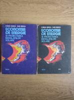 Anticariat: Florian Mercea - Economia de energie si proiectarea instalatiilor solare (2 volume)