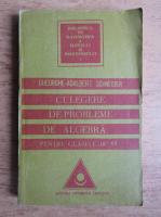 Gheorghe Adalbert Schneider - Culegere de probleme de algebra pentru clasele IX-XII (1998)