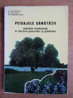Ion Roventa - Peisajele sanatatii