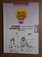 Anticariat: Anton Negrila, Maria Negrila - Algebra, geometrie. Clasa a VIII-a, partea a II-a (2009)