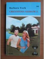 Barbara York - Crizantema salbatica