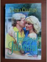 Anticariat: Sandra Chastain - Imaginea iubitului