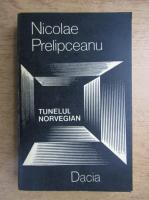 Anticariat: Nicolae Prelipceanu - Tunelul norvegian