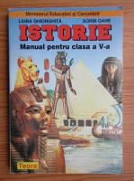Anticariat: Liuba Ghiorghita, Sorin Oane - Istorie. Manual pentru clasa a V-a (2001)