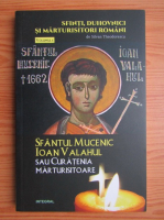 Silvian Theodorescu - Sfantul mucenic Ioan Valahul, sau curatenia mistuitoare