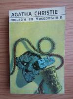 Anticariat: Agatha Christie - Meurtre en Mesopotamie