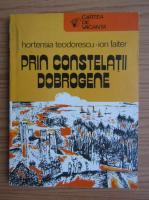 Anticariat: Hortensia Teodorescu, Ion Faiter - Prin constelatii dobrogene