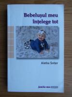 Anticariat: Aletha Solter - Bebelusul meu intelege tot
