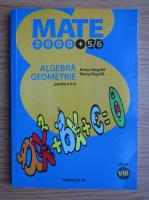 Anton Negrila - Algebra, Geometrie (volumul 2)