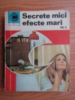 Mariana Ionescu - Secrete mici, efecte mari (volumul 2)