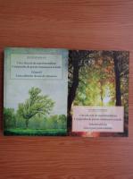 Octavian Soviany - Cinci decenii de experimentalism. Compendiu de poezie romaneasca actuala (2 volume)