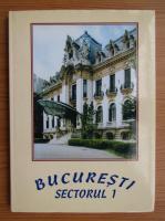 Anticariat: Vasile Gherasim - Bucuresti, Sectorul 1