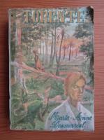 Anticariat: Marie-Anne Desmarest - Torente (volumul 2)