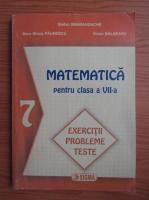 Stefan Smarandache - Matematica pentru clasa a VII-a (2004)