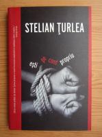 Anticariat: Stelian Turlea - Esti pe cont propriu