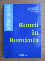 Catalin Zamfir - Romii in Romania