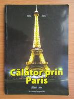 Anticariat: Mihai Jianu - Calator prin Paris
