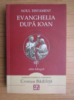 Noul Testament. Evanghelia dupa Ioan