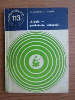 Anticariat: Alexandru Ionescu - Algele, proteinele viitorului