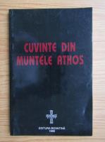 Anticariat: Cuvinte din Muntele Athos