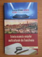 Anticariat: Dan Silviu Boerescu - Istoria ascunsa a oraselor multiculturale din Transilvania (volumul 28)
