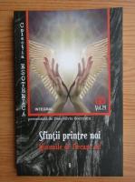 Anticariat: Dan Silviu Boerescu - Sfintii printre noi. Minunile de fiecare zi (volumul 24)